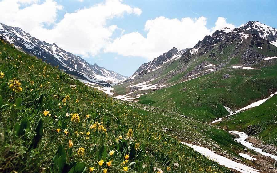 Природные заповедники Узбекистана Природа Узбекистана Это  Природные заповедники Узбекистана Природа Узбекистана Это интересно Туры в Узбекистан