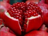 "Garnet – the Oriental ""king"" of fruits"