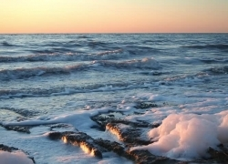 На побережье Аральского моря