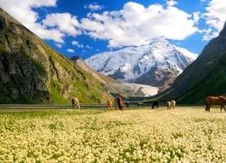 Классический тур в Киргизию на 8 дней