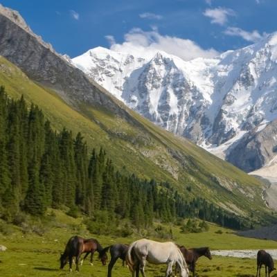 Uzbekistan – Kyrgyzstan Tour | 2