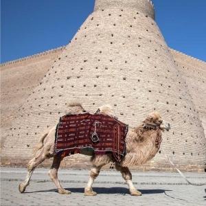 12-tägige Tour nach Usbekistan