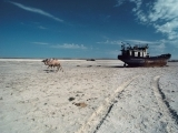 To the Aral Sea...
