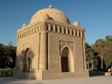 Bird-watching tour in Uzbekistan