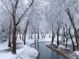 Winter Tale in Uzbekistan
