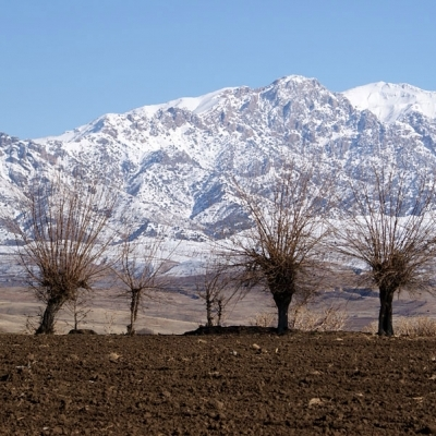 Зимние каникулы в Узбекистане!